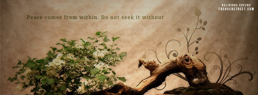 Peace Comes From Within Facebook Cover