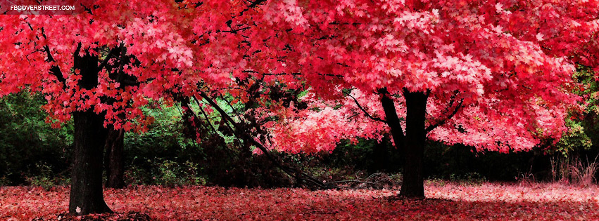 Pink Autumn Trees Facebook Cover