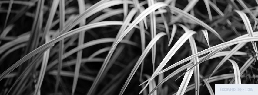 Grass Black and White Facebook Cover