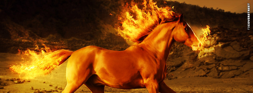 Horse Fire Wild Horse  Facebook cover