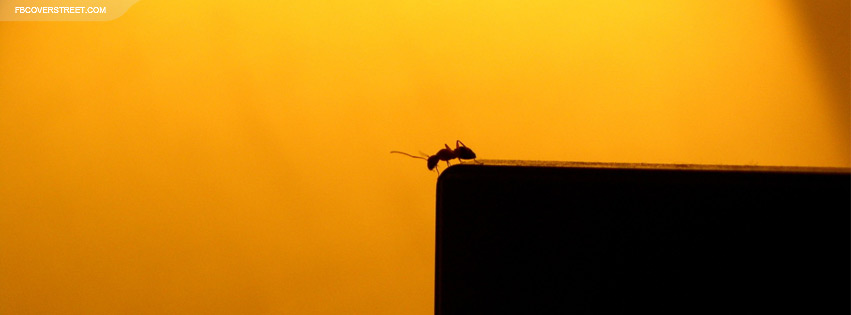 Ant On The Edge Facebook Cover