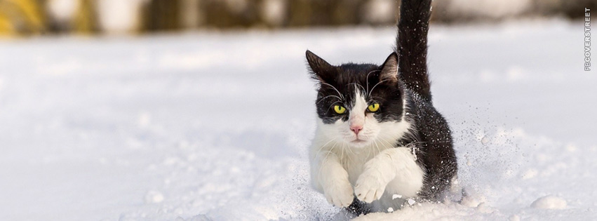 Black and White Cat Running Through Snow Facebook Cover