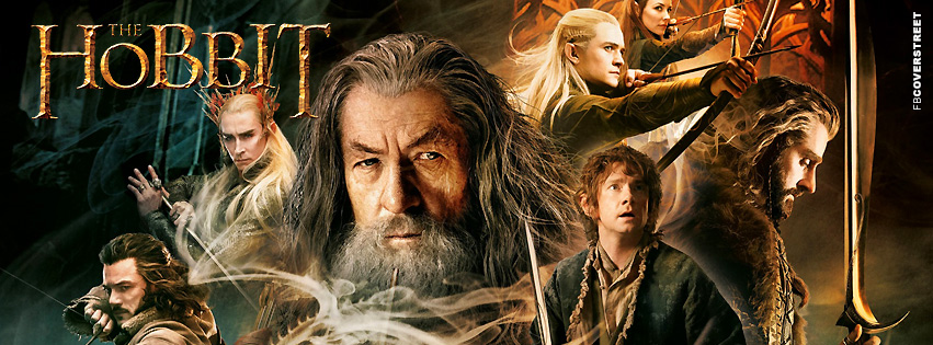 Desolation of Smaug The Hobbit Facebook cover