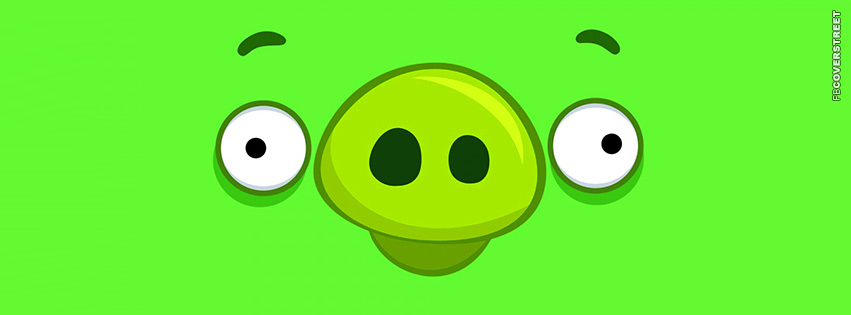Angry Birds Pig Face  Facebook Cover