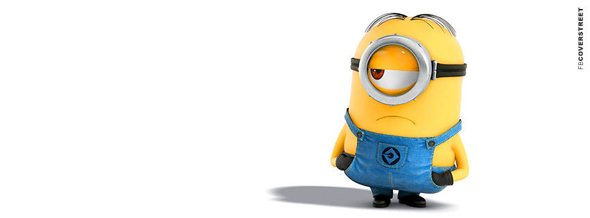 Despicable Me Unamused Minion Facebook Cover