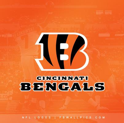 Cincinnati Bengals Game Photo Logo Facebook picture