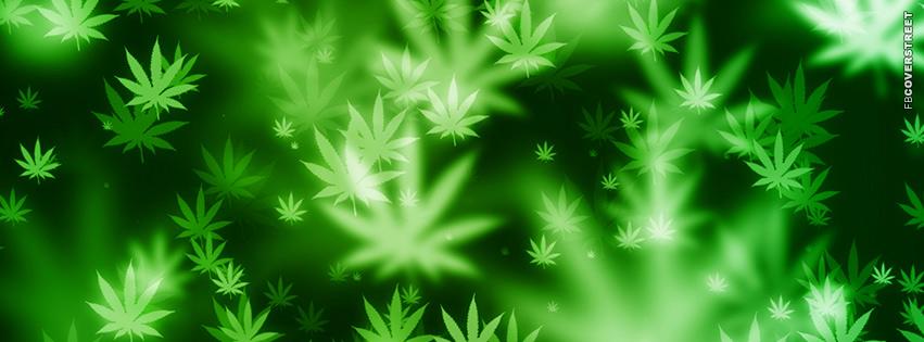 Marijuana Leaves Cover Photo for Facebook Facebook Cover