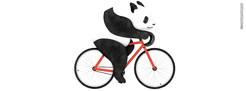 Bicycle Panda Bear  Facebook cover