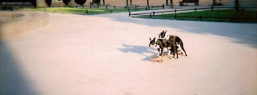 2 Dogs Skateboarding  Facebook cover