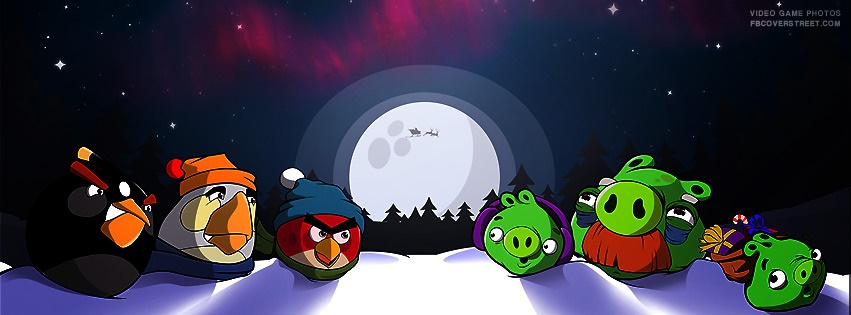 Angry Birds Christmas Facebook Cover