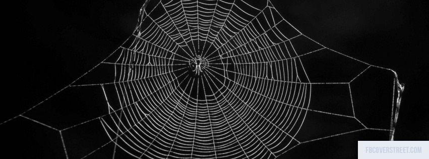 spider web black and white facebook cover fbcoverstreetcom