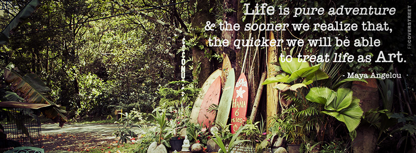 Life is Pure Adventure Quote  Facebook cover