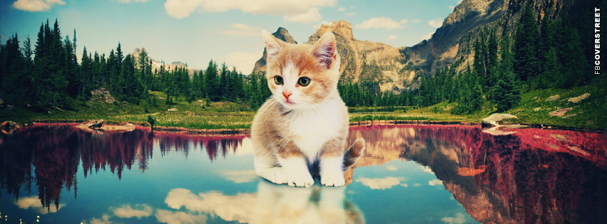 Cute Kitten Mountain Scenery  Facebook cover