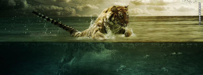 Tiger Art Water  Facebook cover