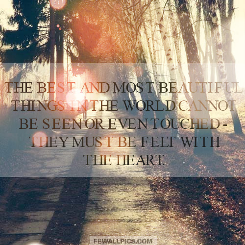 The Most Beautiful Things In The World Helen Keller Quote  Facebook picture