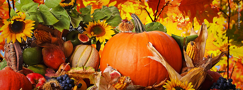 Fall Autumn Pumpkin Food Assortment  Facebook Cover