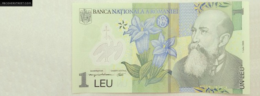 One Romanian Leu  Facebook cover