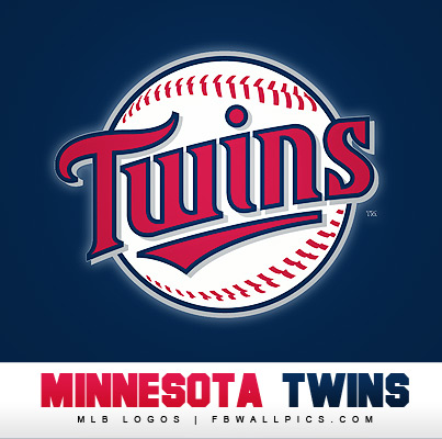 Minnesota Twins Logo Facebook picture
