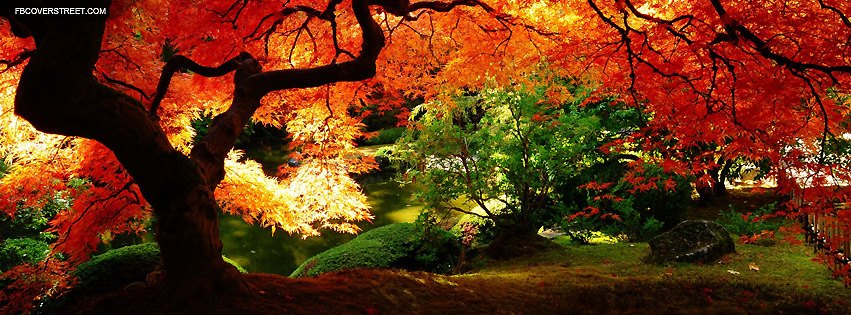 Beautiful Autumn Facebook cover