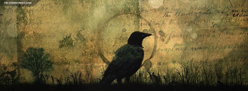 Black Crow Facebook Cover