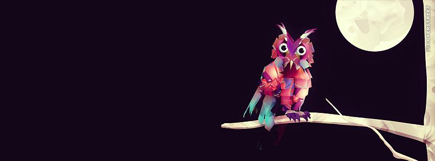 Owl Vector Art  Facebook Cover
