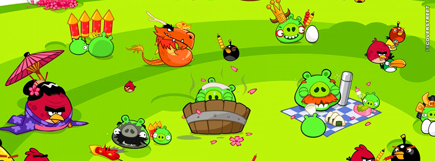 Angry Birds Party  Facebook Cover