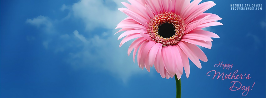 Happy Mothers Day Pink Flower Facebook Cover