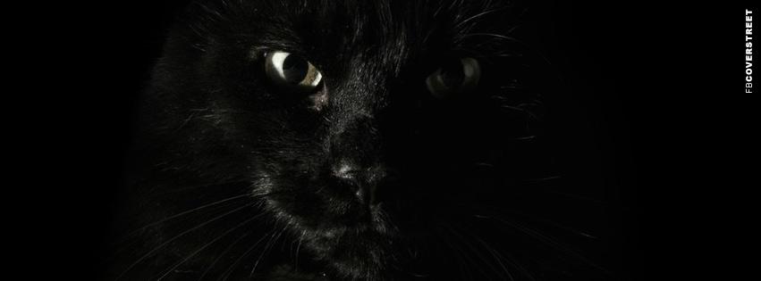Creepy Black Cat  Facebook Cover