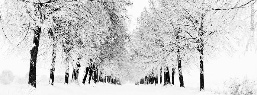 Winter Landscape Path  Facebook cover