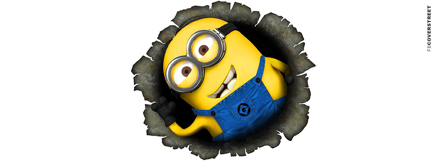 Despicable Me Minion Busting  Facebook Cover