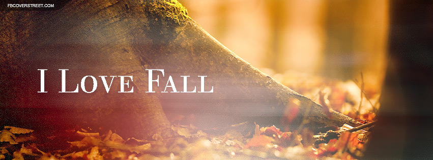 Exceptional I Love Fall Quote