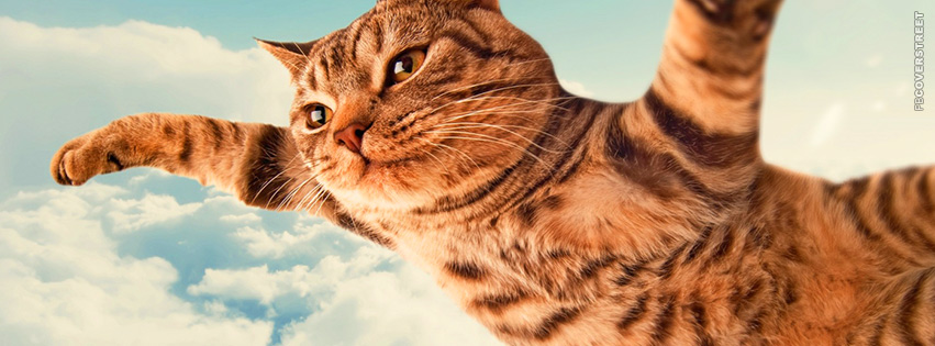 Flying Cat  Facebook Cover