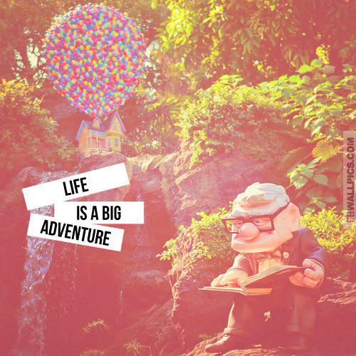 Life Is A Big Adventure Up Facebook picture