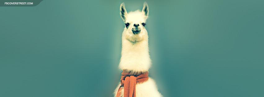 A Llama In A Scarf Facebook Cover