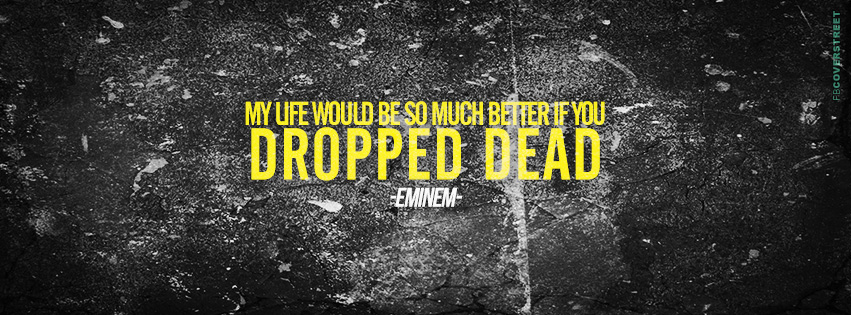 Eminem Marshall Mathers LP 2 So Much Better Lyrics Quote  Facebook cover
