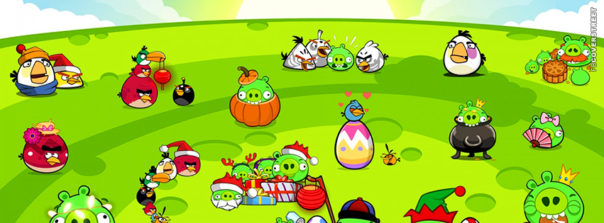 Angry Birds Big Party  Facebook Cover