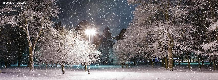 Winter Night Park Photograph Facebook Cover