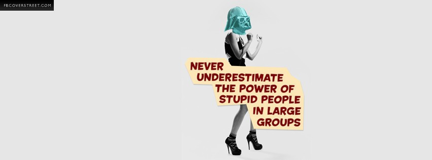 Never Underestimate The Power of Stupid People In Large Groups  Facebook Cover
