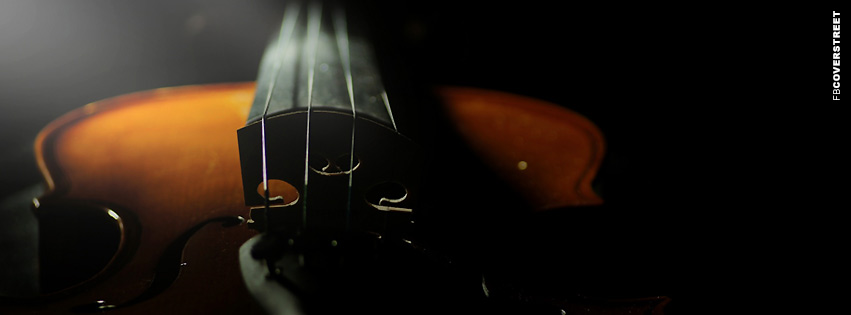 Violin Photograph  Facebook cover