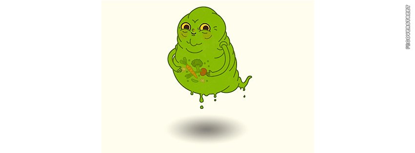 Ghostbusters Slimer Full Stomach  Facebook cover