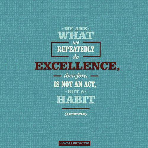 Excellence Is An Act Not A Habit Arstotle Quote  Facebook picture