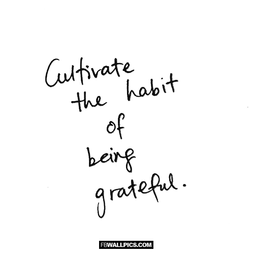 Cultivate The Habit of Being Grateful  Facebook picture