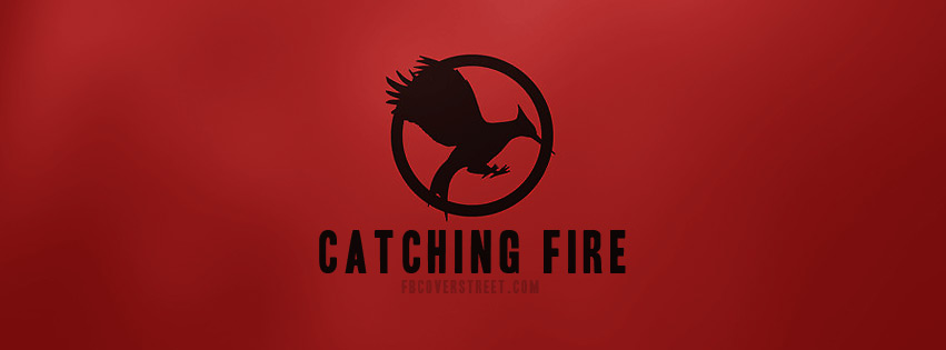 The Hunger Games Catching Fire Book
