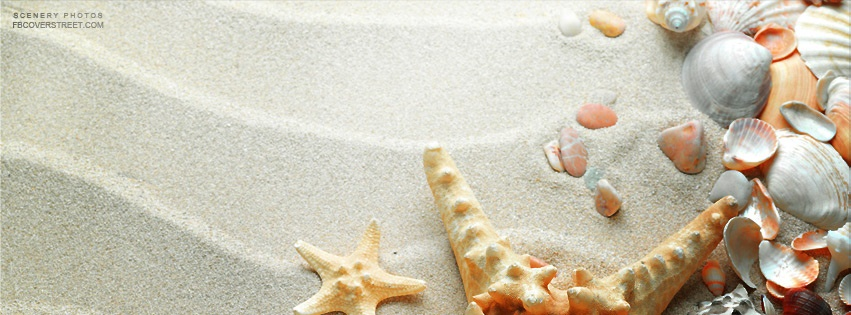 Beach With Tons of Shells Facebook Cover