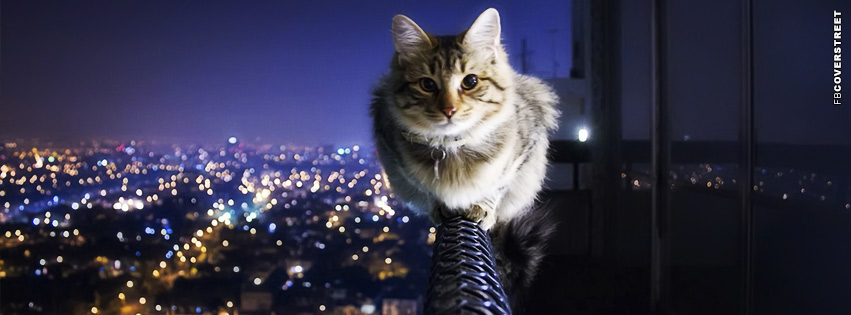 Cat Balance Facebook Cover