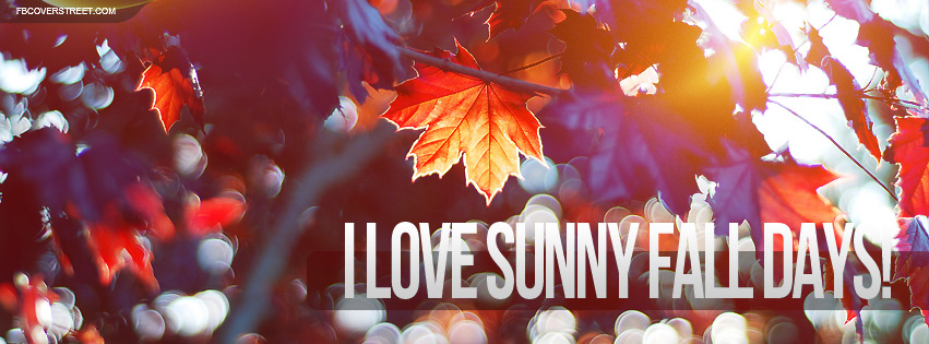 I Love Sunny Fall Days Facebook Cover