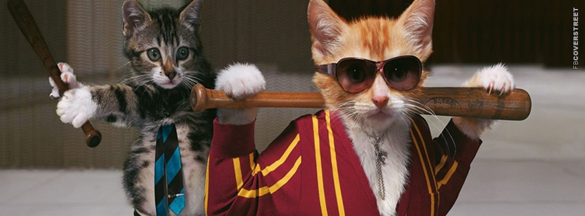 Gangster Cats  Facebook Cover