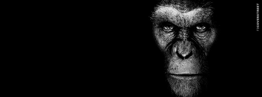 Rise of The Planet of The Apes Movie Facebook cover