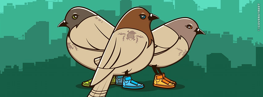 Swagger Pidgeons  Facebook cover