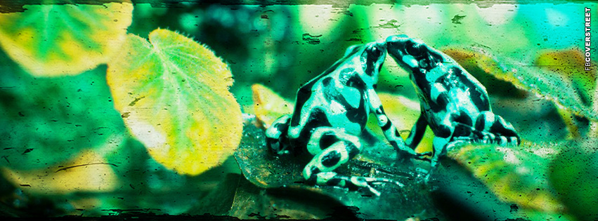 Frogs Kissing Grunge  Facebook cover